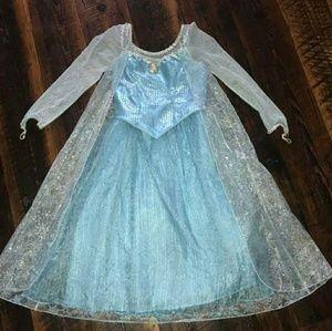 Elsa dress (Disney park Authentic) NWT